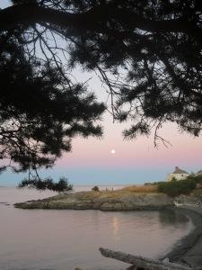 Full Moon, June 2015